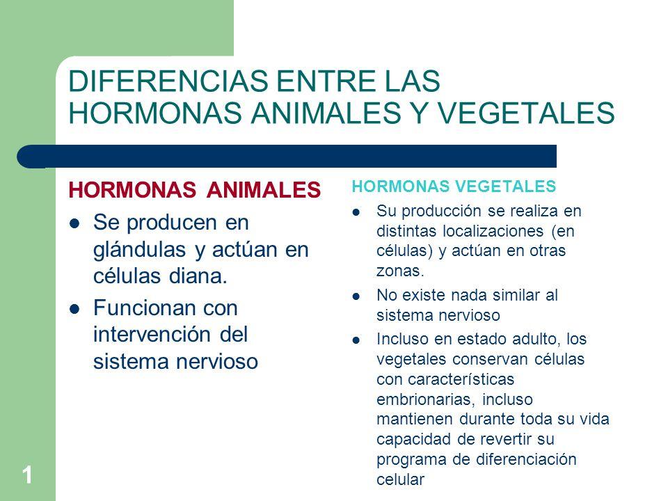 1 DIFERENCIAS ENTRE LAS HORMONAS ANIMALES Y VEGETALES HORMONAS ANIMALES Se producen en glándulas y actúan en células diana. Funcionan con intervención