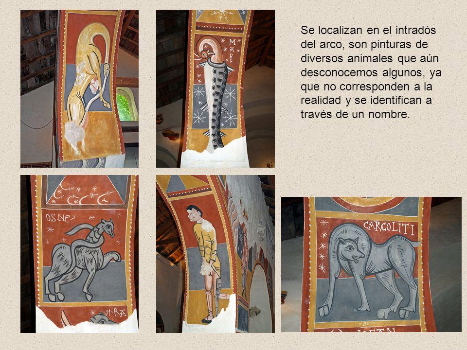 Se localizan en el intradós del arco, son pinturas de diversos animales que aún desconocemos algunos, ya que no corresponden a la realidad y se identi