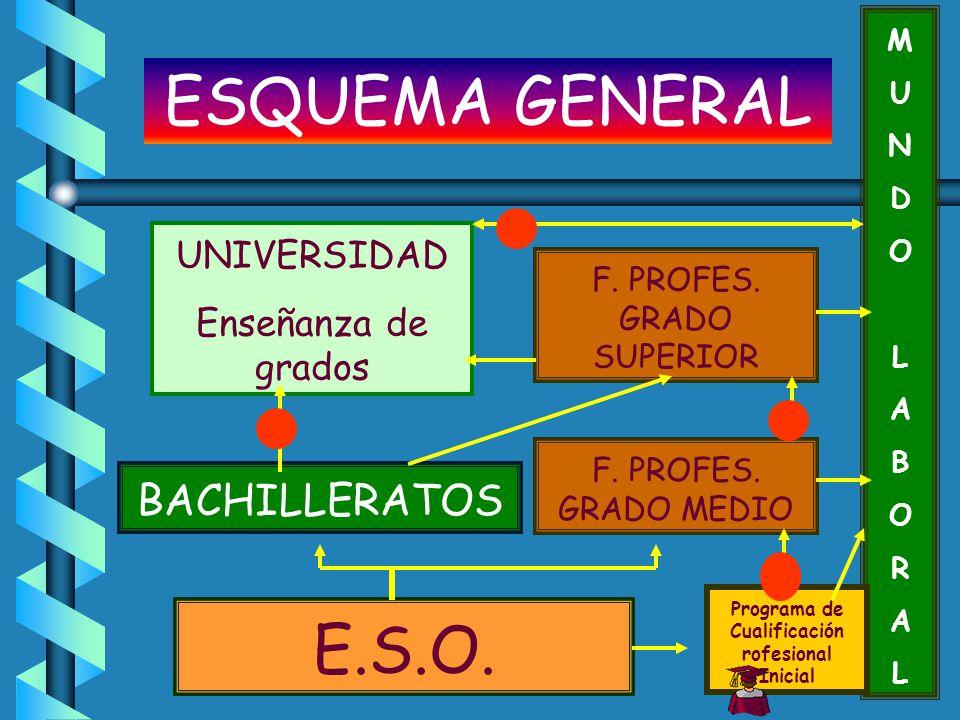E.S.O. BACHILLERATOS F. PROFES. GRADO MEDIO MUNDOLABORALMUNDOLABORAL Programa de Cualificación rofesional Inicial F. PROFES. GRADO SUPERIOR UNIVERSIDA