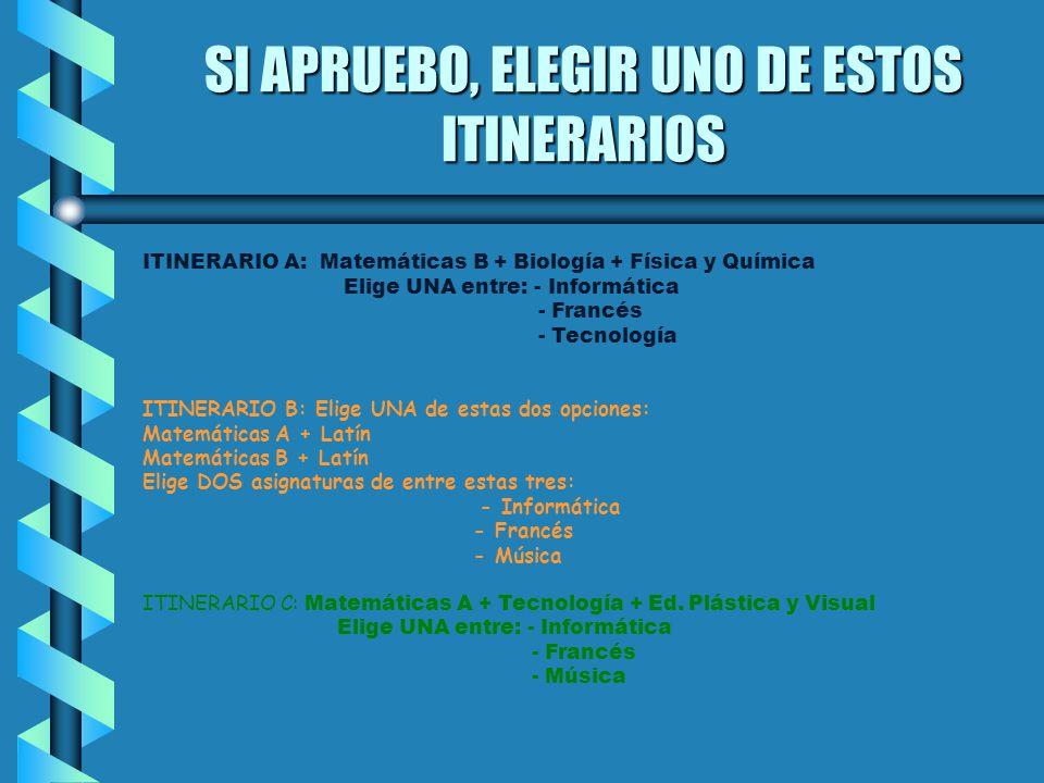 FORMACIÓN PROFESIONAL CICLOS FORMATIVOS DE GRADO MEDIO SALIDAS TRAS LA OBTENCIÓN DEL TÍTULO DE TÉCNICO - Trabajo.