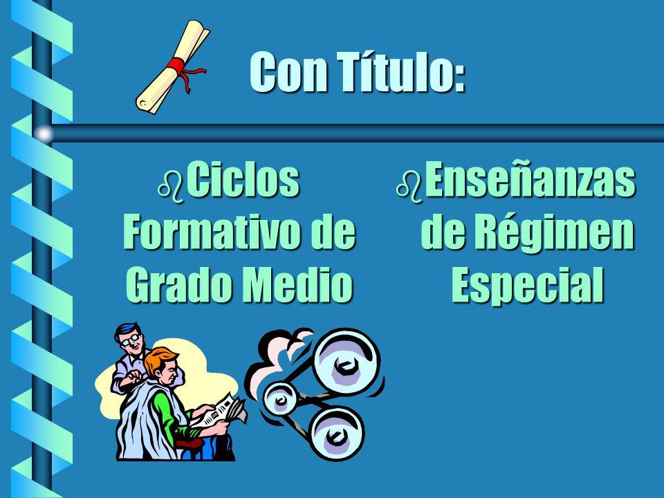 b Ciclos Formativo de Grado Medio b Enseñanzas de Régimen Especial Con Título: