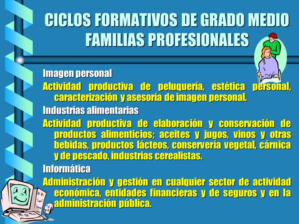 CICLOS FORMATIVOS DE GRADO MEDIO FAMILIAS PROFESIONALES Imagen personal Actividad productiva de peluquería, estética personal, caracterización y aseso