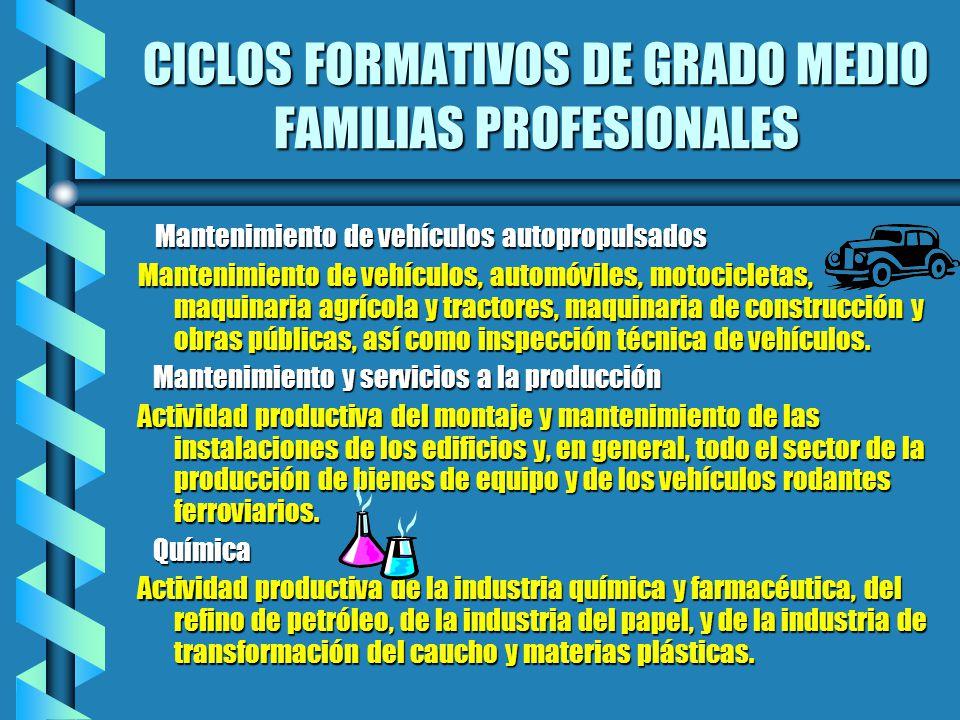 CICLOS FORMATIVOS DE GRADO MEDIO FAMILIAS PROFESIONALES Mantenimiento de vehículos autopropulsados Mantenimiento de vehículos autopropulsados Mantenim