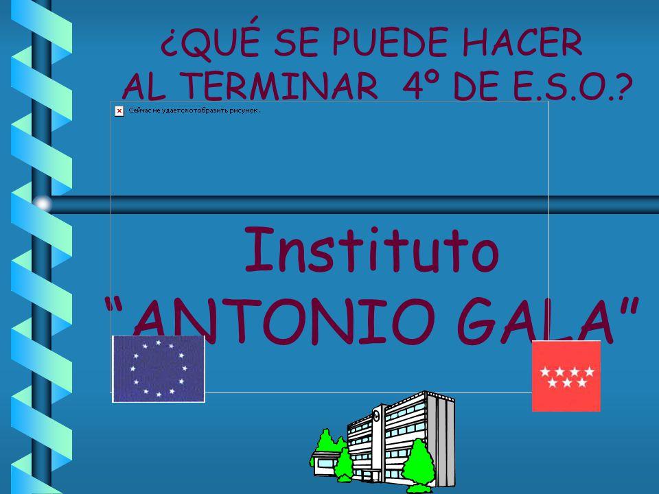 ¿QUÉ SE PUEDE HACER AL TERMINAR 4º DE E.S.O.? Instituto ANTONIO GALA