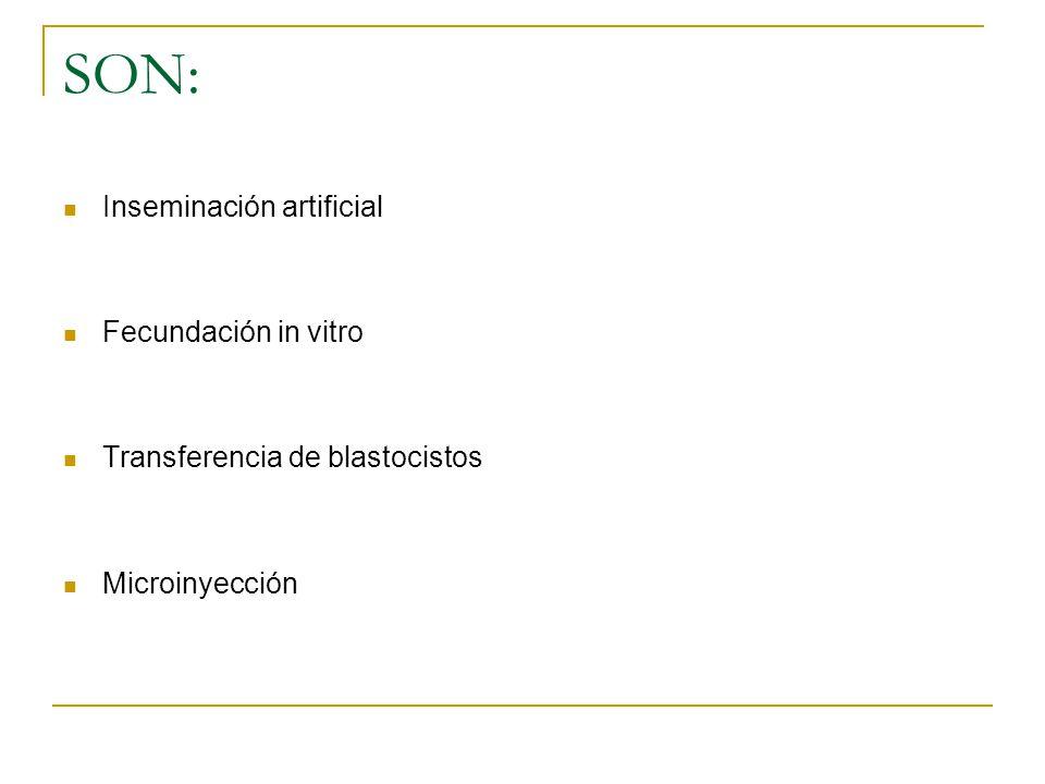 SON: Inseminación artificial Fecundación in vitro Transferencia de blastocistos Microinyección
