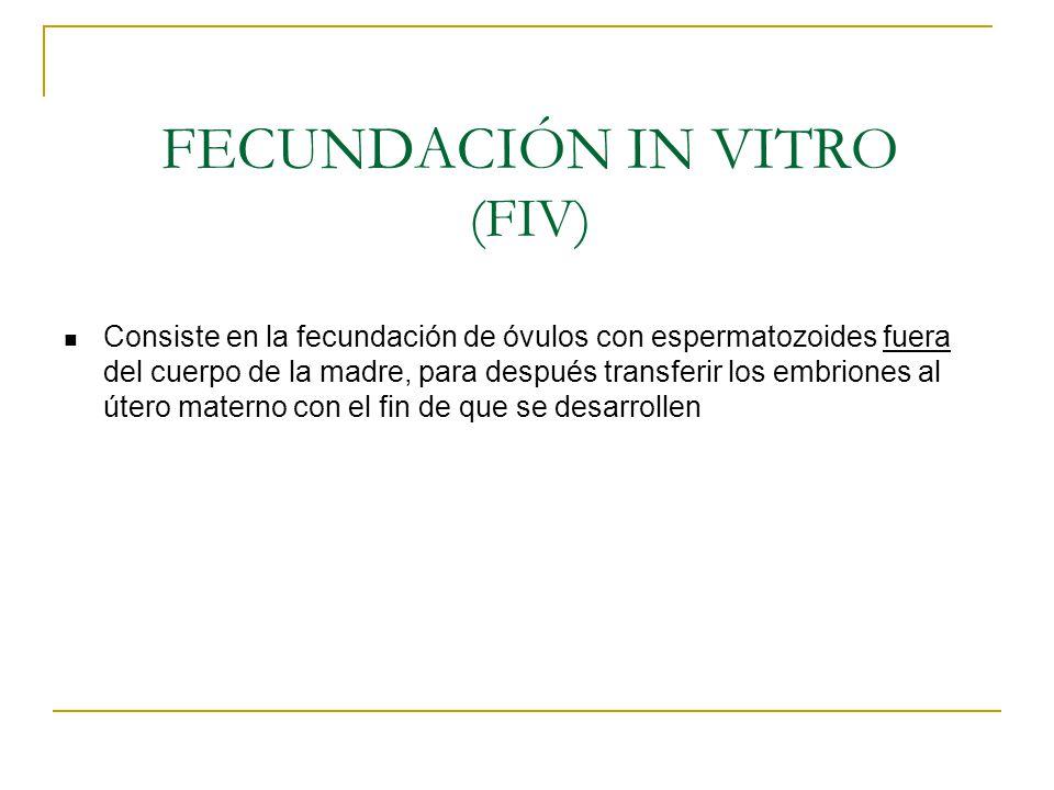 FECUNDACIÓN IN VITRO (FIV) Consiste en la fecundación de óvulos con espermatozoides fuera del cuerpo de la madre, para después transferir los embrione