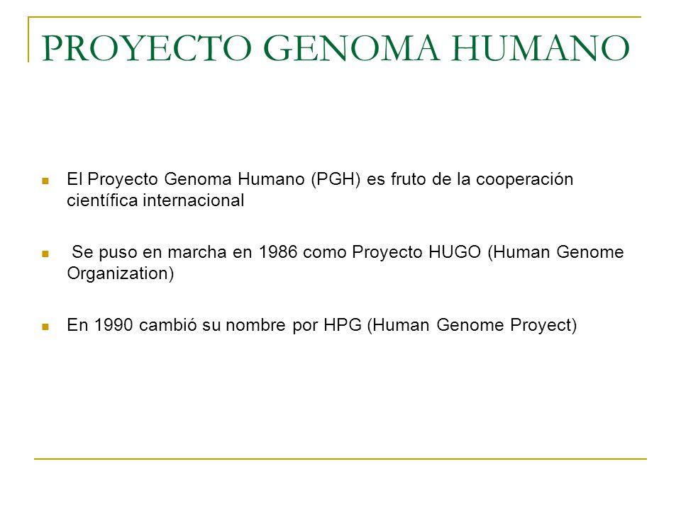 PROYECTO GENOMA HUMANO El Proyecto Genoma Humano (PGH) es fruto de la cooperación científica internacional Se puso en marcha en 1986 como Proyecto HUG