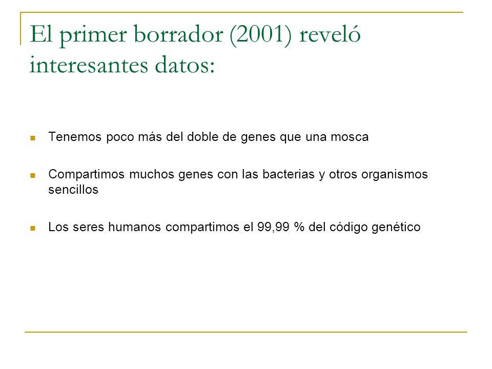 El primer borrador (2001) reveló interesantes datos: Tenemos poco más del doble de genes que una mosca Compartimos muchos genes con las bacterias y ot