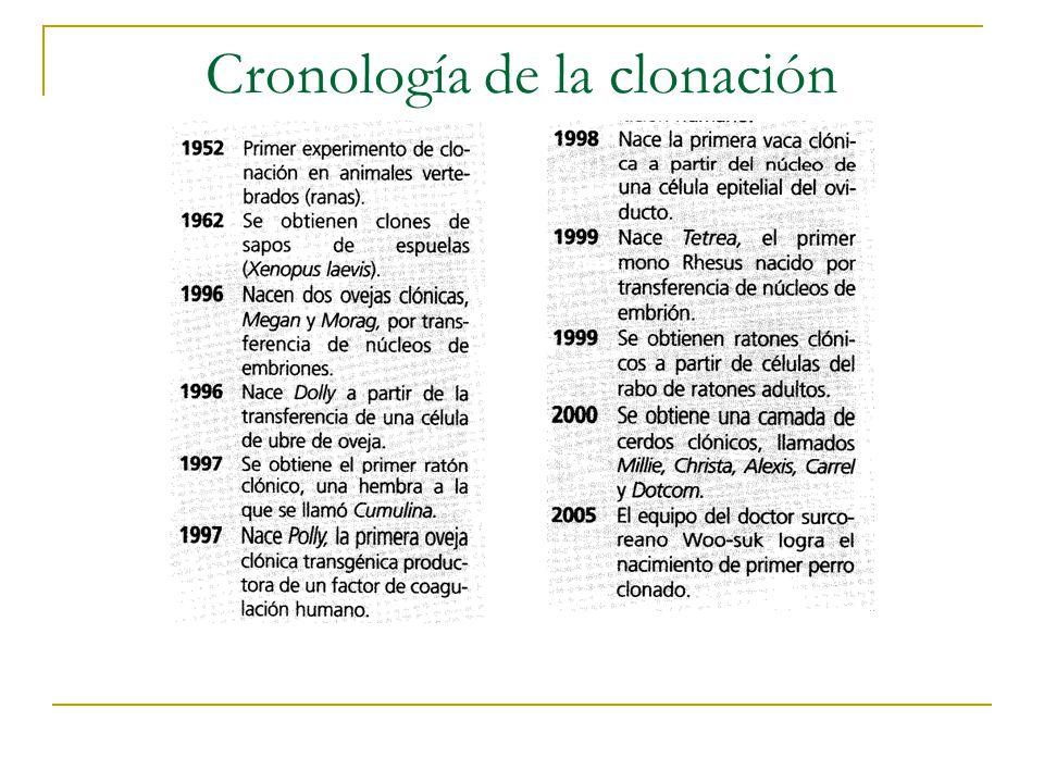 Cronología de la clonación