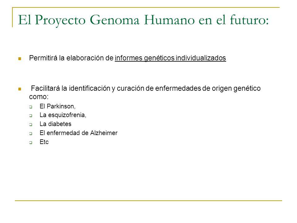 El Proyecto Genoma Humano en el futuro: Permitirá la elaboración de informes genéticos individualizados Facilitará la identificación y curación de enf