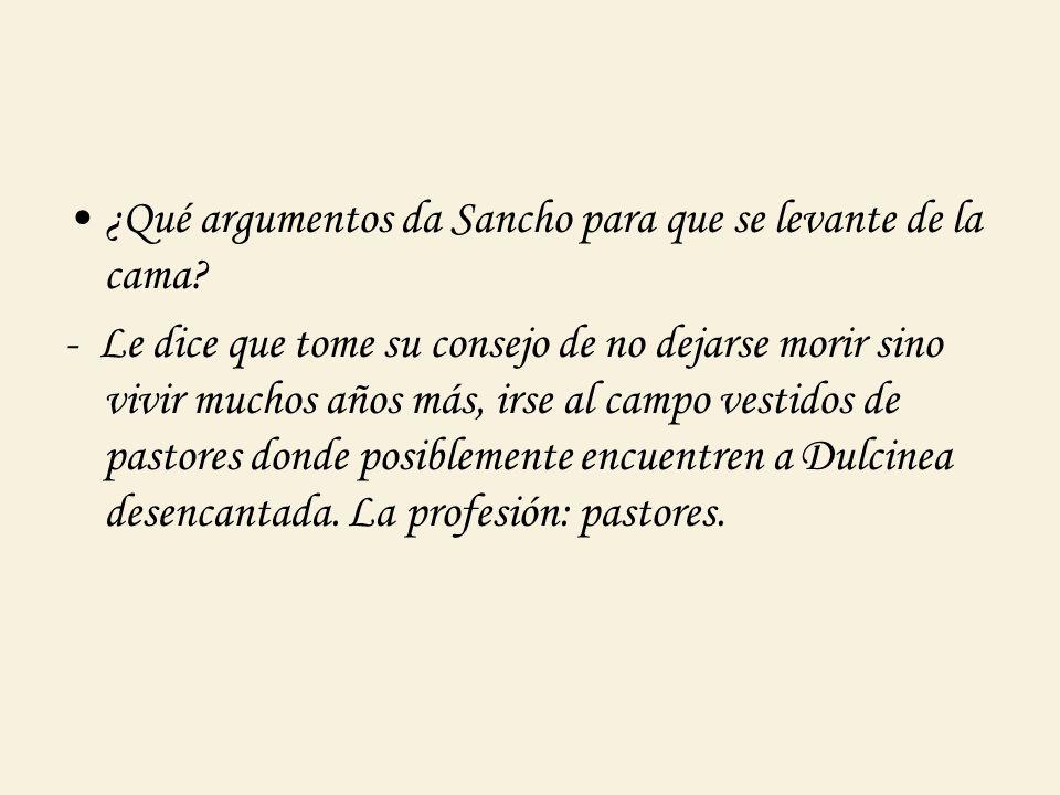 ¿ Como intenta recompensar don Quijote a Sancho.