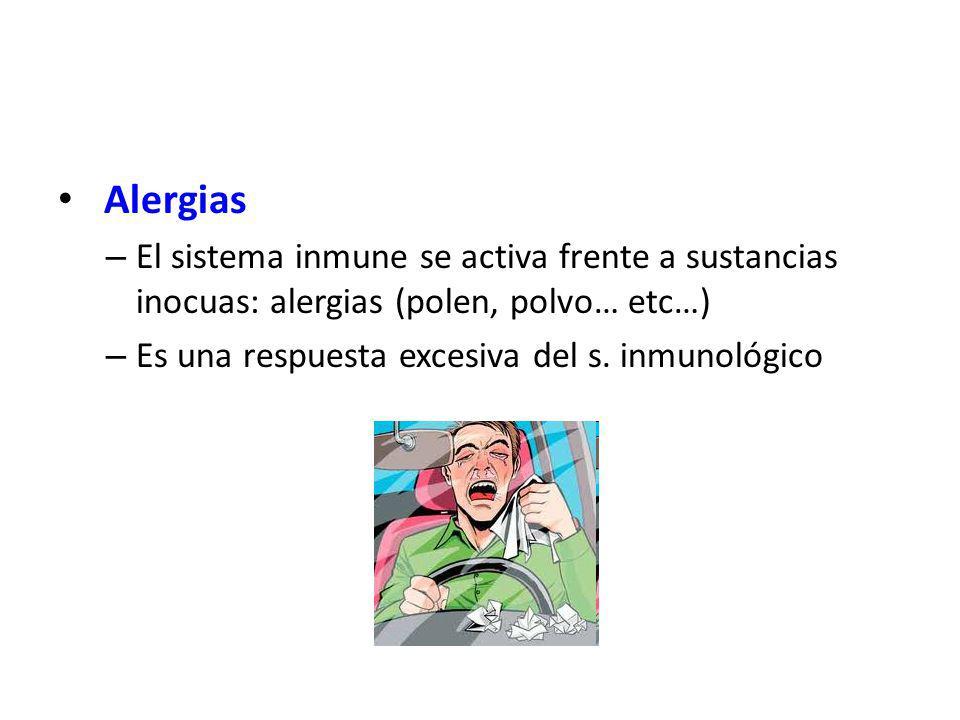 Alergias – El sistema inmune se activa frente a sustancias inocuas: alergias (polen, polvo… etc…) – Es una respuesta excesiva del s. inmunológico