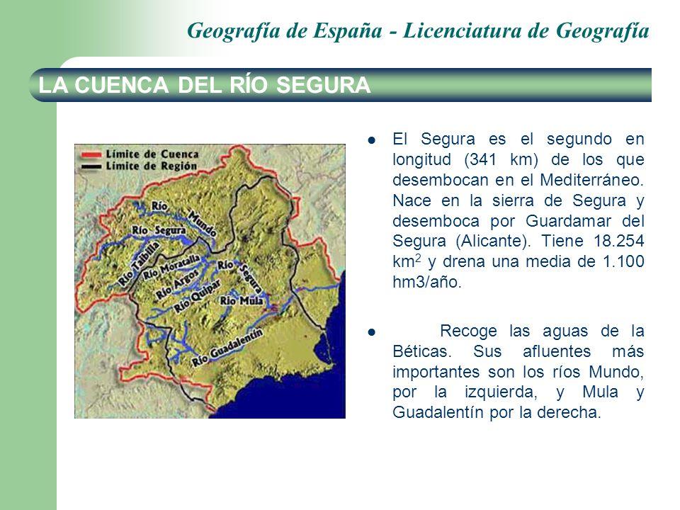 Geografía de España - Licenciatura de Geografía LA CUENCA DEL RÍO SEGURA El Segura es el segundo en longitud (341 km) de los que desembocan en el Medi