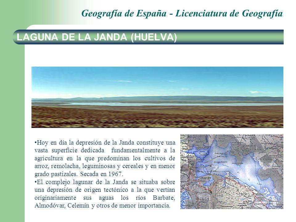 Geografía de España - Licenciatura de Geografía LAGUNA DE LA JANDA (HUELVA) Hoy en día la depresión de la Janda constituye una vasta superficie dedica