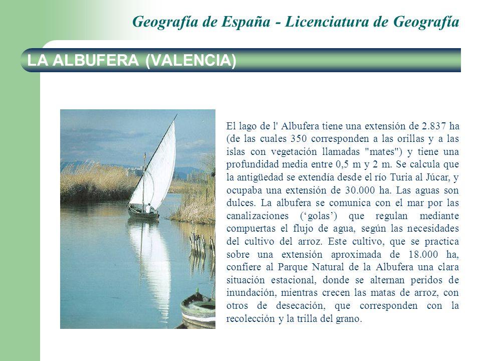 Geografía de España - Licenciatura de Geografía LA ALBUFERA (VALENCIA) El lago de l Albufera tiene una extensión de 2.837 ha (de las cuales 350 corresponden a las orillas y a las islas con vegetación llamadas mates ) y tiene una profundidad media entre 0,5 m y 2 m.
