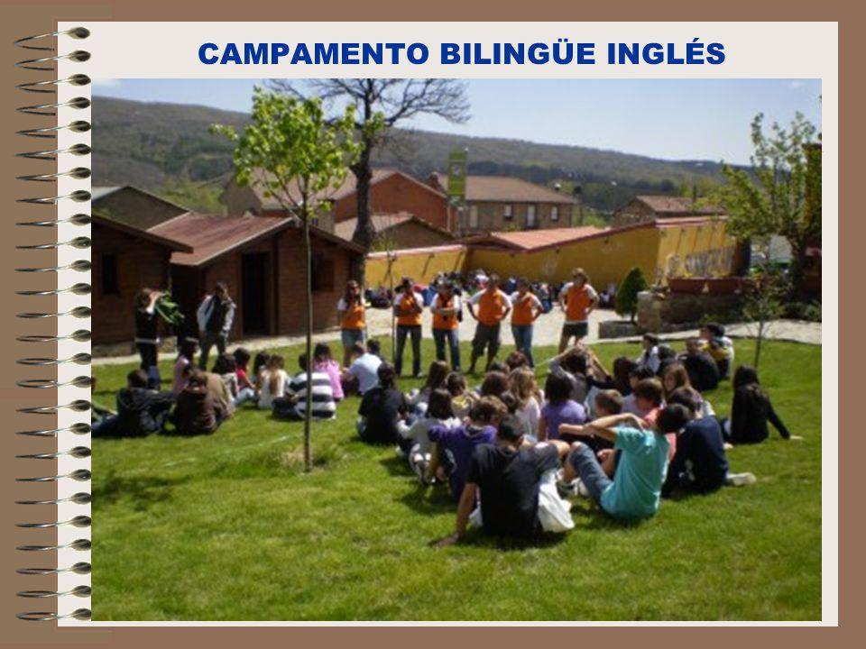 C/Senda perdida s/n Alcalá de Henares CAMPAMENTO BILINGÜE INGLÉS