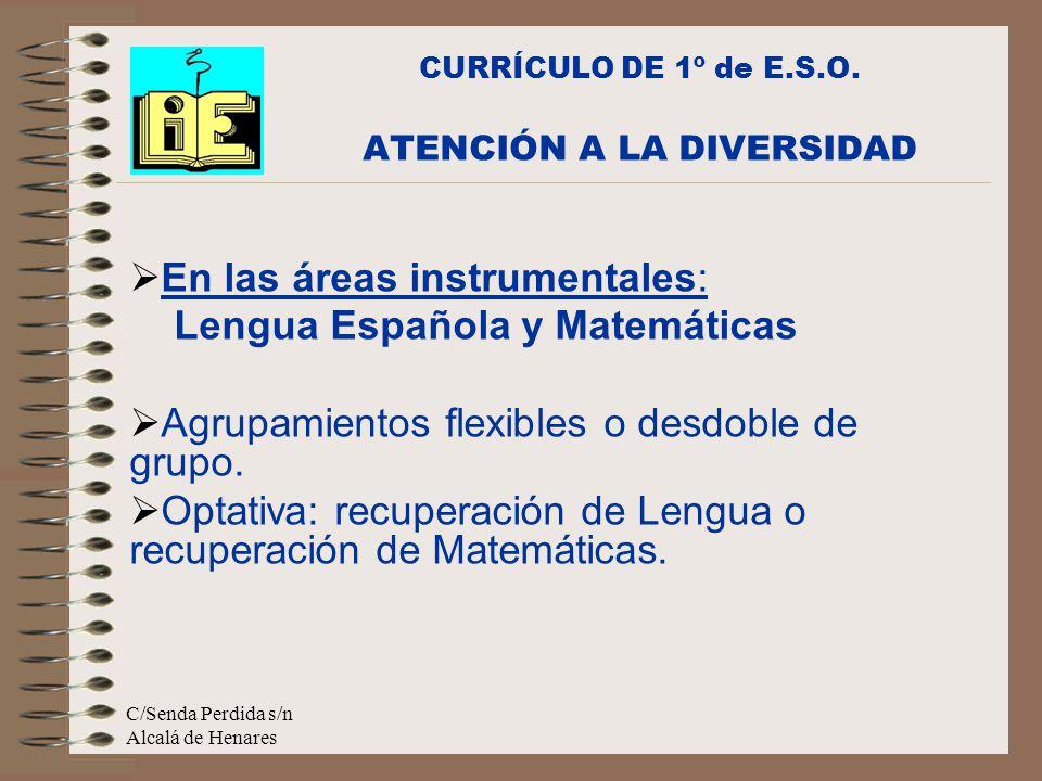 C/Senda Perdida s/n Alcalá de Henares En las áreas instrumentales: Lengua Española y Matemáticas Agrupamientos flexibles o desdoble de grupo.