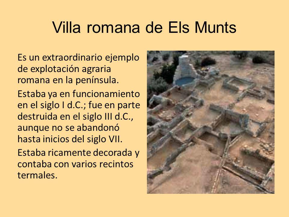 Villa romana de Els Munts Es un extraordinario ejemplo de explotación agraria romana en la península. Estaba ya en funcionamiento en el siglo I d.C.;