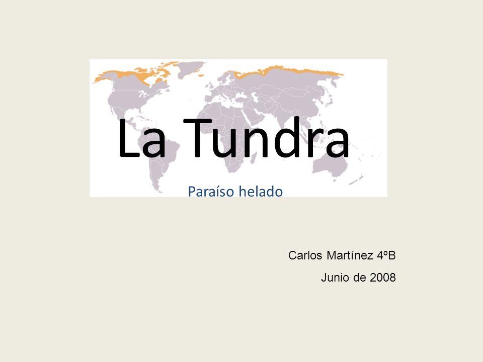 La Tundra Carlos Martínez 4ºB Junio de 2008 Paraíso helado