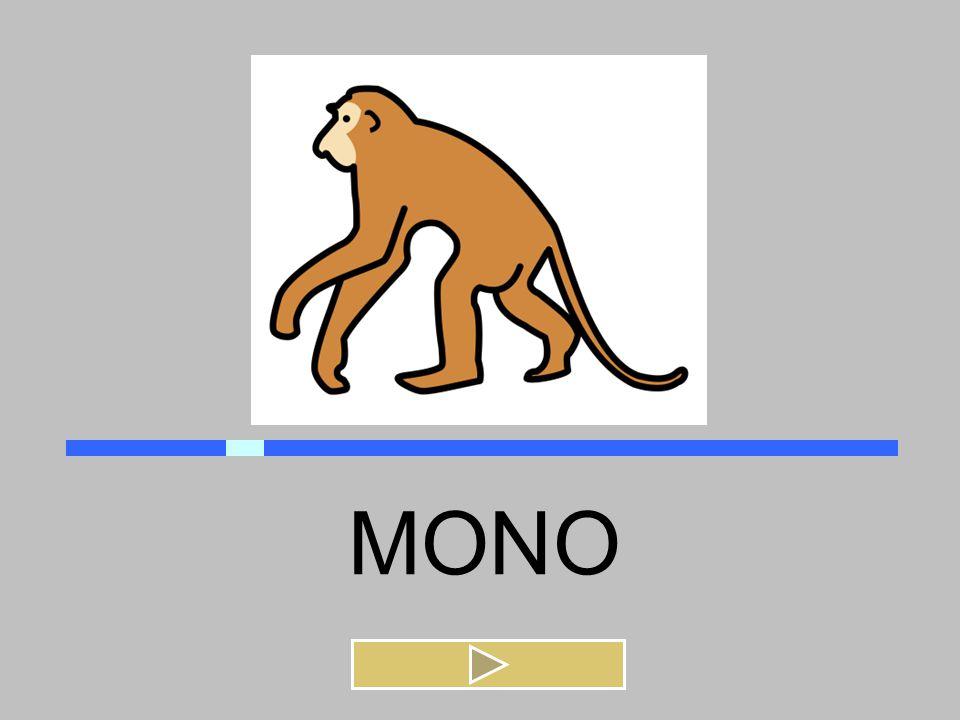 MONO MANOMINA MOTO