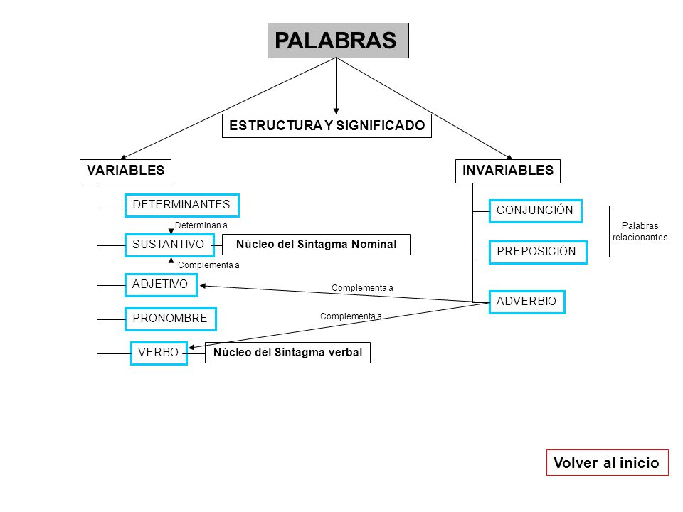 PALABRAS INVARIABLESVARIABLES DETERMINANTES SUSTANTIVO ADJETIVO VERBO PRONOMBRE CONJUNCIÓN ADVERBIO PREPOSICIÓN Núcleo del Sintagma Nominal Núcleo del Sintagma verbal Palabras relacionantes Complementa a Volver al inicio Complementa a Determinan a ESTRUCTURA Y SIGNIFICADO
