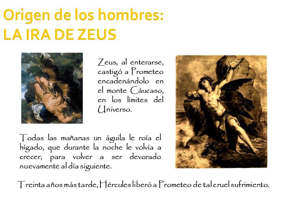 Origen de los hombres: LA IRA DE ZEUS Treinta años más tarde, Hércules liberó a Prometeo de tal cruel sufrimiento. Zeus, al enterarse, castigó a Prome