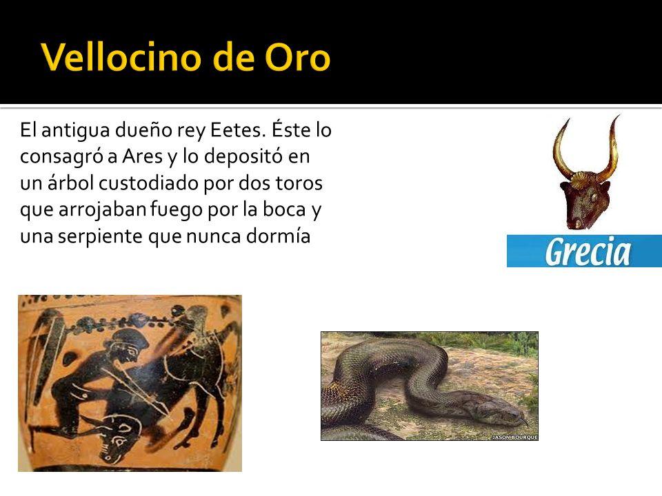 El antigua dueño rey Eetes. Éste lo consagró a Ares y lo depositó en un árbol custodiado por dos toros que arrojaban fuego por la boca y una serpiente