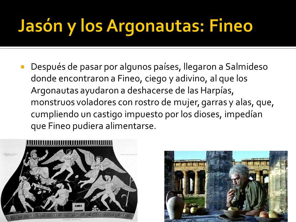 Después de pasar por algunos países, llegaron a Salmideso donde encontraron a Fineo, ciego y adivino, al que los Argonautas ayudaron a deshacerse de l