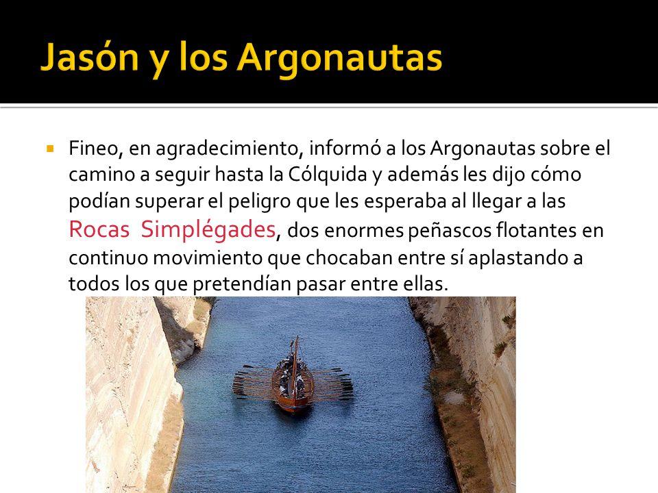 Fineo, en agradecimiento, informó a los Argonautas sobre el camino a seguir hasta la Cólquida y además les dijo cómo podían superar el peligro que les
