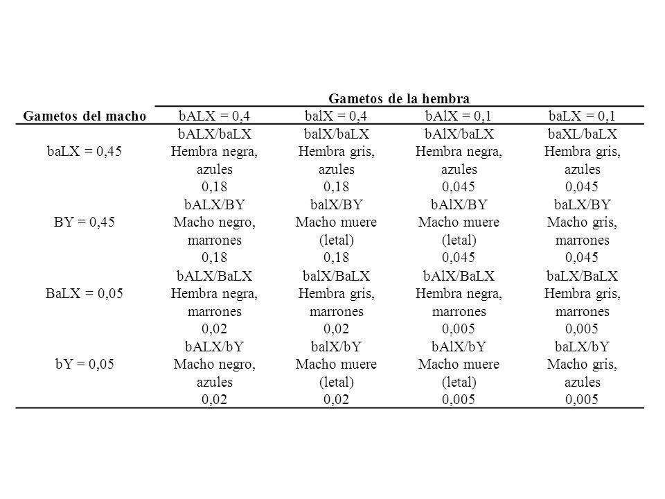 Gametos de la hembra Gametos del machobALX = 0,4balX = 0,4bAlX = 0,1baLX = 0,1 baLX = 0,45 bALX/baLX Hembra negra, azules 0,18 balX/baLX Hembra gris,