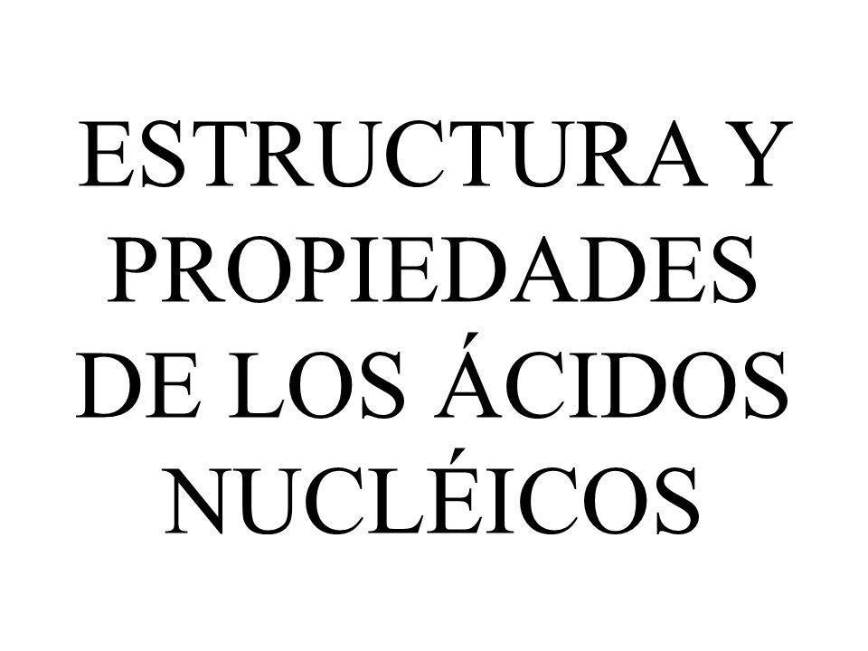 ESTRUCTURA Y PROPIEDADES DE LOS ÁCIDOS NUCLÉICOS