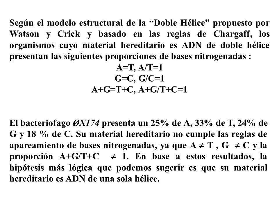 Según el modelo estructural de la Doble Hélice propuesto por Watson y Crick y basado en las reglas de Chargaff, los organismos cuyo material hereditar