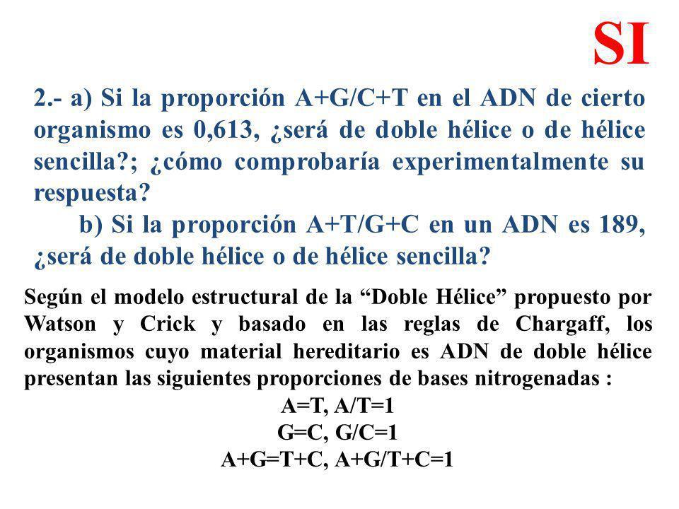 2.- a) Si la proporción A+G/C+T en el ADN de cierto organismo es 0,613, ¿será de doble hélice o de hélice sencilla?; ¿cómo comprobaría experimentalmen