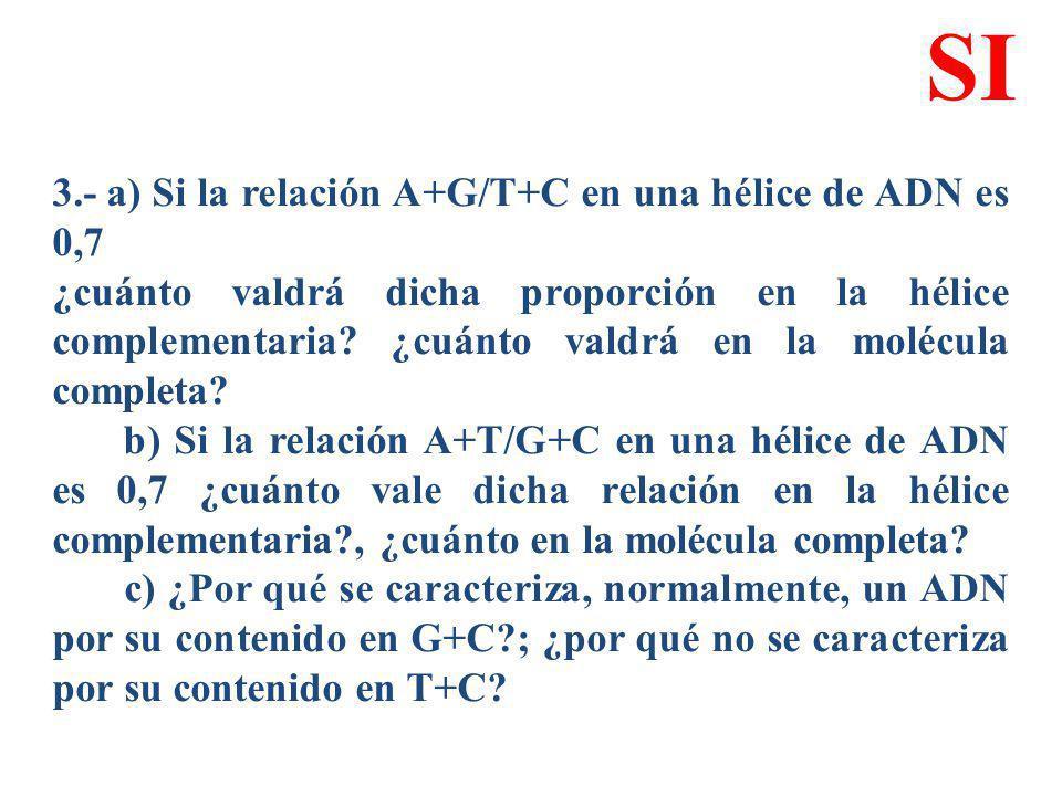 3.- a) Si la relación A+G/T+C en una hélice de ADN es 0,7 ¿cuánto valdrá dicha proporción en la hélice complementaria? ¿cuánto valdrá en la molécula c