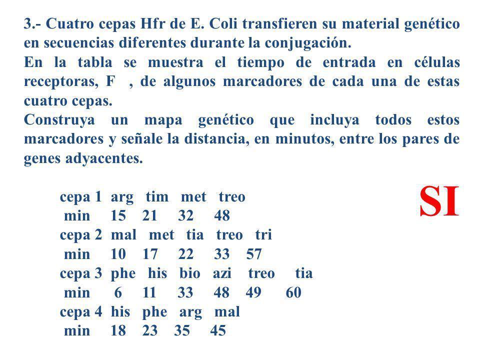 3.- Cuatro cepas Hfr de E. Coli transfieren su material genético en secuencias diferentes durante la conjugación. En la tabla se muestra el tiempo de