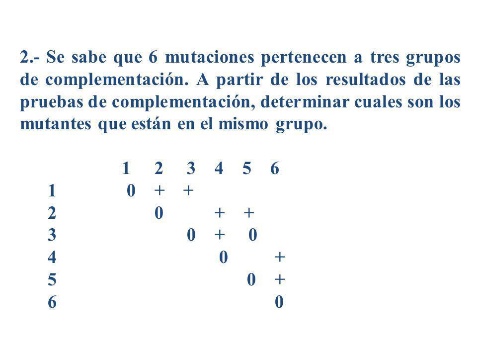 2.- Se sabe que 6 mutaciones pertenecen a tres grupos de complementación. A partir de los resultados de las pruebas de complementación, determinar cua