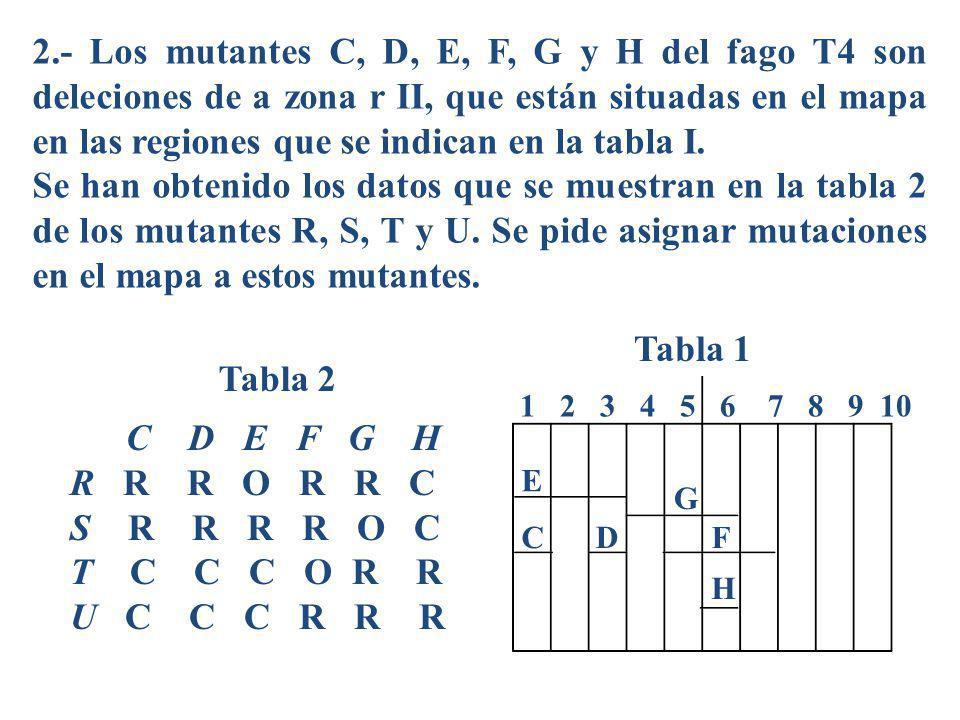 2.- Los mutantes C, D, E, F, G y H del fago T4 son deleciones de a zona r II, que están situadas en el mapa en las regiones que se indican en la tabla