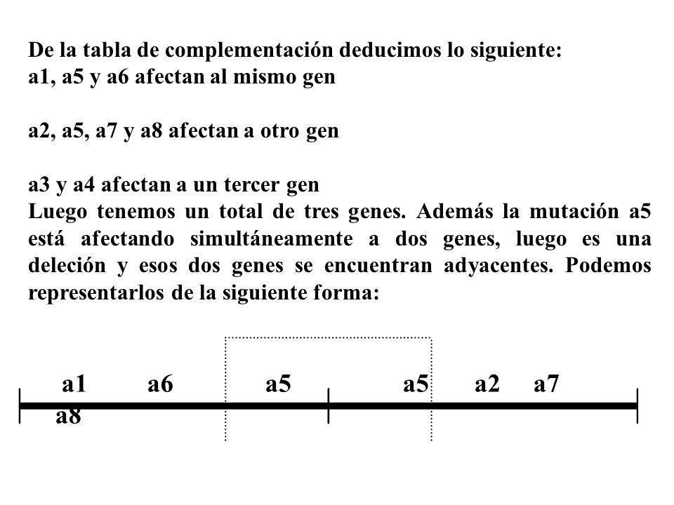 De la tabla de complementación deducimos lo siguiente: a1, a5 y a6 afectan al mismo gen a2, a5, a7 y a8 afectan a otro gen a3 y a4 afectan a un tercer