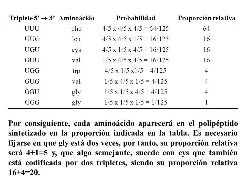 Triplete 5 3 AminoácidoProbabilidadProporción relativa UUUphe4/5 x 4/5 x 4/5 = 64/12564 UUGleu4/5 x 4/5 x 1/5 = 16/12516 UGUcys4/5 x 1/5 x 4/5 = 16/12
