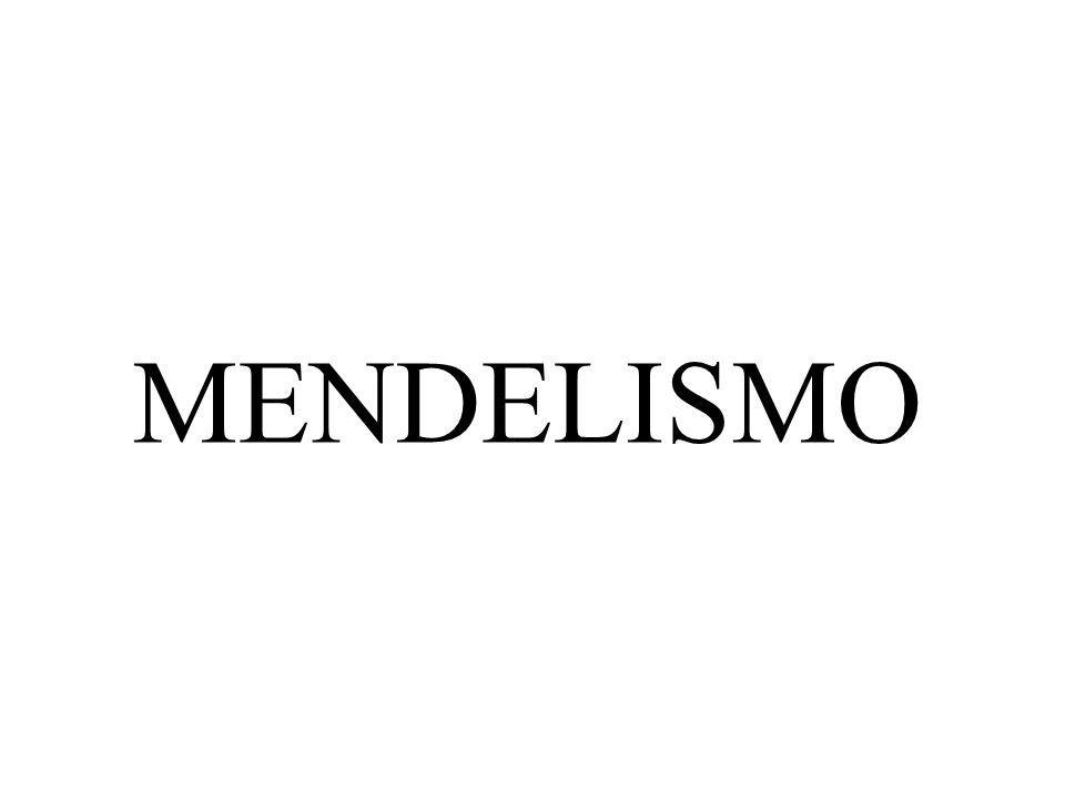 MENDELISMO