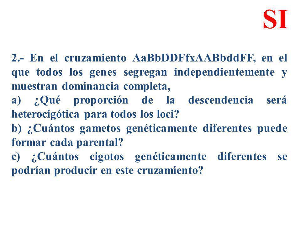2.- En el cruzamiento AaBbDDFfxAABbddFF, en el que todos los genes segregan independientemente y muestran dominancia completa, a) ¿Qué proporción de l