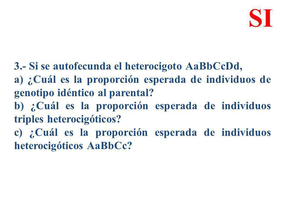 3.- Si se autofecunda el heterocigoto AaBbCcDd, a) ¿Cuál es la proporción esperada de individuos de genotipo idéntico al parental? b) ¿Cuál es la prop