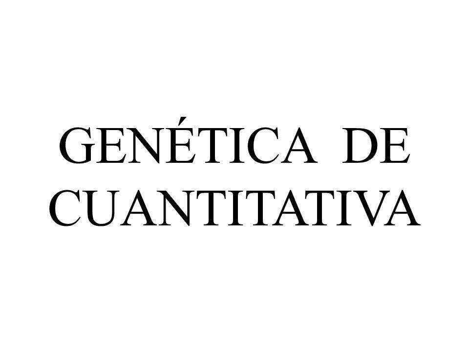 GENÉTICA DE CUANTITATIVA