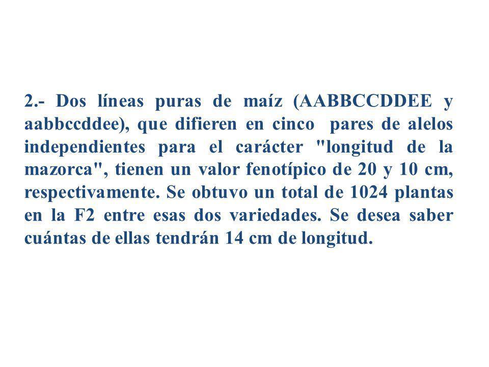 2.- Dos líneas puras de maíz (AABBCCDDEE y aabbccddee), que difieren en cinco pares de alelos independientes para el carácter