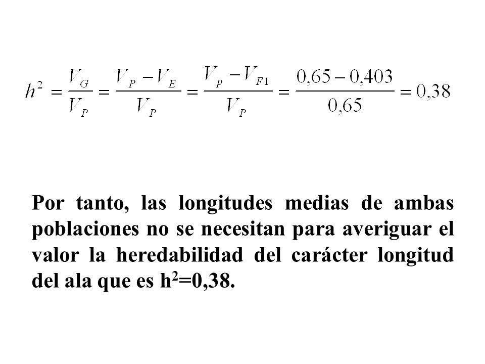 Por tanto, las longitudes medias de ambas poblaciones no se necesitan para averiguar el valor la heredabilidad del carácter longitud del ala que es h
