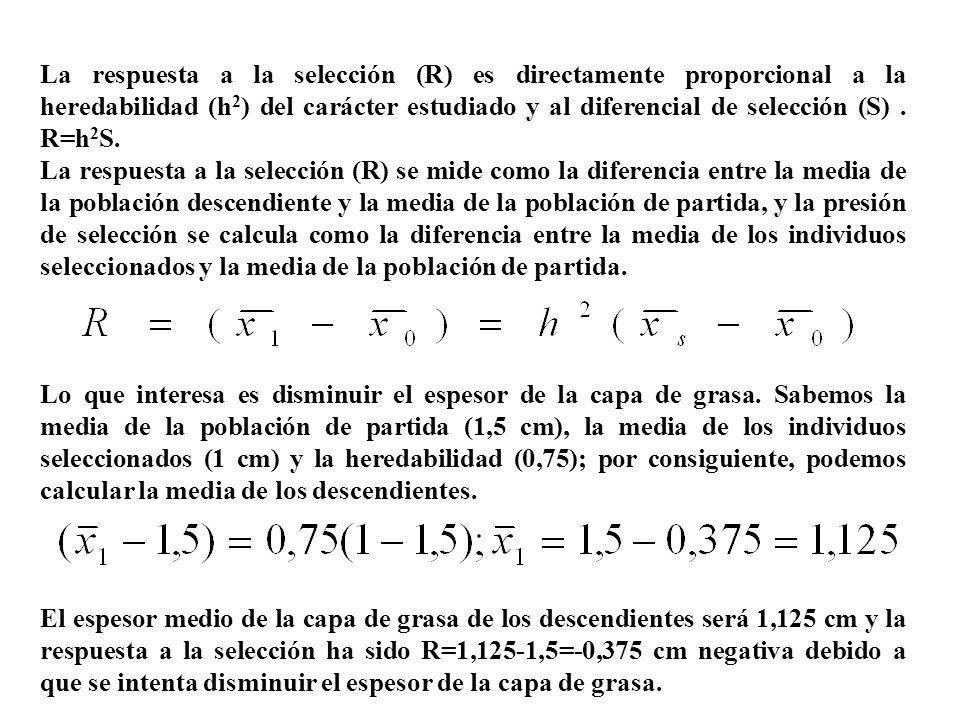 La respuesta a la selección (R) es directamente proporcional a la heredabilidad (h 2 ) del carácter estudiado y al diferencial de selección (S). R=h 2