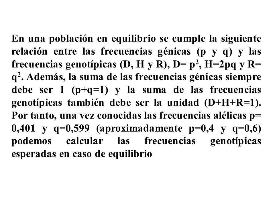 En una población en equilibrio se cumple la siguiente relación entre las frecuencias génicas (p y q) y las frecuencias genotípicas (D, H y R), D= p 2,