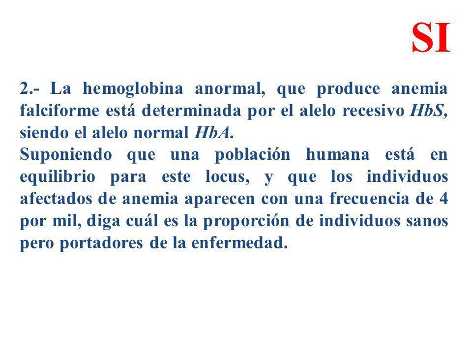 2.- La hemoglobina anormal, que produce anemia falciforme está determinada por el alelo recesivo HbS, siendo el alelo normal HbA. Suponiendo que una p