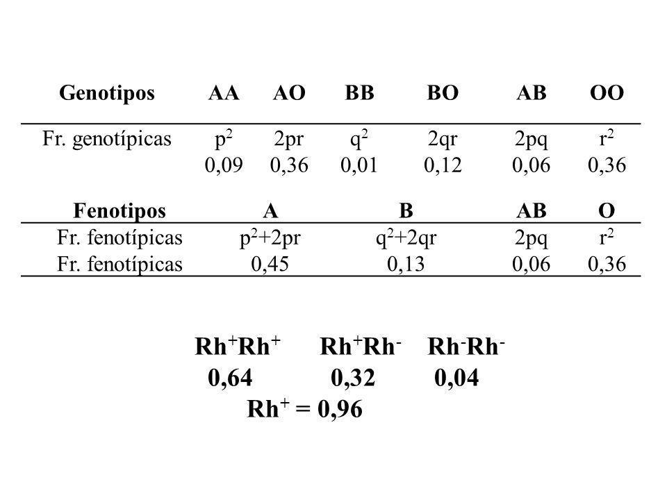 GenotiposAAAOBBBOABOO Fr. genotípicasp2p2 2prq2q2 2qr2pqr2r2 0,090,360,010,120,060,36 FenotiposABABO Fr. fenotípicasp 2 +2prq 2 +2qr2pqr2r2 Fr. fenotí