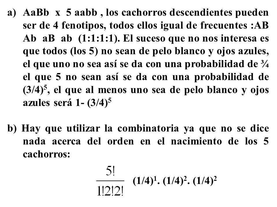 a)AaBb x 5 aabb, los cachorros descendientes pueden ser de 4 fenotipos, todos ellos igual de frecuentes :AB Ab aB ab (1:1:1:1). El suceso que no nos i